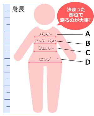 バスト サイズ 測定 アプリ