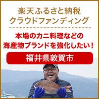福井県敦賀市のプロジェクト