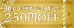 10,000円以上の購入で250円OFF