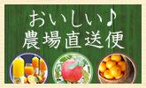 新鮮なこだわり野菜が毎月届く!国産やさい便