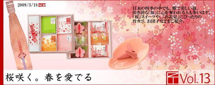 春、桜を愛でる